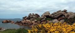 La côte de granit rose - Trégastel - Ploumanac'h - Perros-Guirec (Thethe35400) Tags: bretagne breiz granitrose granit rose rock rocher boulder rocha roca roccia breizh bzh