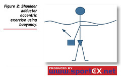 Shoulder adductor eccentric exercise using buoyancy. (sportEX journals) Tags: rehabilitation massagetherapy sportex sportsinjury sportsmassage sportexdynamics