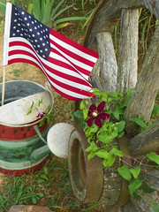 July in the Garden (tanyajones808) Tags: flowers yard antique flag lawn clematis 4thofjuly wateringcan wagonwheel countrygarden primatives
