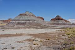 Arizona Desert, 2013 (Andrea Di Castro) Tags: arizona usa nature landscape paisaje d800 nikond800