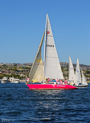 Newport Beach Sailing 8.8.13 1 (Marcie Gonzalez) Tags: ocean california county blue sky orange usa beach water beer sport race america canon relax boats photography bay coast boat waves sailing view wind united north sunny competition can racing southern socal coastal beercan cal newport shore sail bayside states gonzalez activity marcie so marciegonzalez marciegonzalezphotography