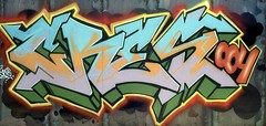 Wynwood Walk About (Burnt Umber) Tags: urban industry film gold graffiti construction paint shoot industrial florida kodak steel stripes tag georgewbush president pipes pipe vandal 200 vandalism 135 tagging obama gwb ue drainage fashiondistrict urbex barack dade wynwood penat designdistrict ©allrightsreserved urbanartist fujicaax5 penit flurbex tamronadaptall2sp2880f3542 rpilla001 dustinspagnola artbasel2012