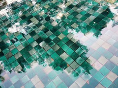Reflections (pfer) Tags: tree water reflections squares
