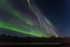 Colorful Aurora borealis in Faskrudsfjordur (*Jonina*) Tags: longexposure sky night iceland 500views sland northernlights auroraborealis ntt himinn 10000views 3000views norurljs 100faves 4000views 6000views explored 7000views 8000views 9000views 25faves fskrsfjrur faskrudsfjordur jnnagurnskarsdttir august27th2013
