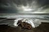 Reclaimed (Nick Twyford) Tags: longexposure sea newzealand seascape clouds blacksand nikon waves wideangle driftwood nz westcoast wanganui kaiiwi lateafternoonlight leefilters 1024mm mowhanau manawatuwanganui d7000 stormymood lee09nd lee06gndhard phottixgeoone