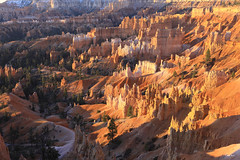 Bryce Canyon National Park - Utah (Geourjon Benoit) Tags: park usa sunrise garden landscape utah united canyon queens trail national hoodoo bryce states paysage unis hoodoos etats amphitheaters