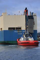SD Dolphin (Peet de Rouw) Tags: haven holland port rotterdam tugboat tug europoort portofrotterdam kotug denachtdienst havenfoto frontierace peetderouw sddolhin