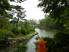 Charizard in Hiroshima, Hiroshima 23 (Shukkei-en Garden) (Kasadera) Tags: toys hiroshima figure pokemon pokmon  charizard   glurak  shukkeiengarden pokemonkids   dracaufeu