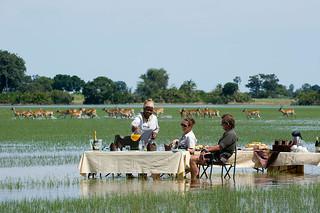 Botswana Okavango Delta Photo Safari 52