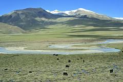 Meandering river (zuki12) Tags: yak mountain train river flood tibet chengdu hours lhasa plain 44 meandering