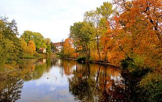 Autumn river landscape (Explore)