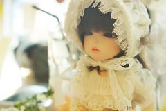 140216 HobbyTomo (with. Lynn, Hwayoon)