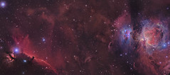 M42 & Horsehead Mosaic (Chuck Manges) Tags: nebula orion m42 horsehead alnitak astrometrydotnet:status=solved qhyccd at65edq qhy9m astrometrydotnet:id=nova240068