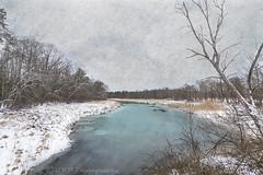 Frozen in Time (GWP Photography) Tags: schnee trees winter snow canon frozen newjersey nieve nj textures neve neige monmouthcounty 雪 śnieg frozenintime ثلج efs1022mmf3545usm eos50d trolled сніг हिमपात ellenvd