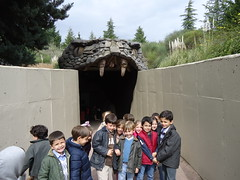 orvalle-infantil-faunia14 (7)