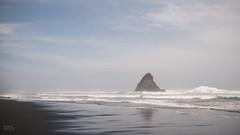 West Coast (Robert Brienza) Tags: ocean newzealand summer seascape beach auckland northisland westcoast 2014 waitakereranges sigma30mmf14 primelens karekarebeach canon7d