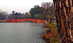 Puente viejo - San Antonio de Areco. (jagar41_ Juan Antonio) Tags: argentina miargentina buenosaires provinciadebuenosaires sanantoniodeareco río puente pueblos pueblo