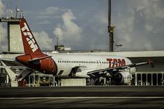 _MG_1516-2 (gabrielbuenoflores) Tags: janelainfraero spotterdayinfraero spotterdaysbmq airport aeroporto desembarque
