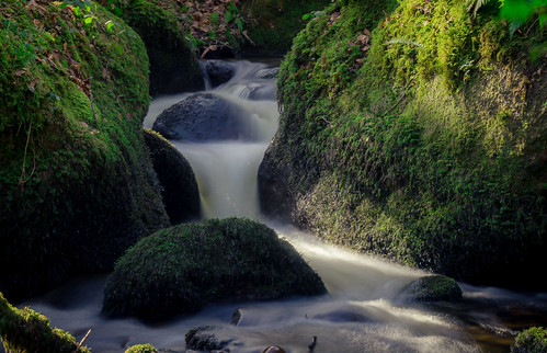 Beautiful Dartmoor stream
