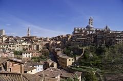Simply Siena (Antonio Cinotti ) Tags: leica leicat siena tuscany toscana italy italia duomodisiena torredelmangia