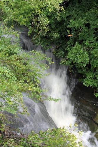 Oxford Falls