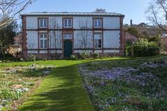 IMG_91 (schaffnerjoggl) Tags: frühling blüten bunt farben hermannshof schausichtungsgarten weinheim deutschland krokus