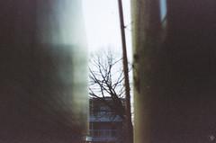 (yasu19_67) Tags: minoltaα7 ebcfujinon50mmf14 50mm film filmism filmphotography bokeh sunlight samsungprimecolor100 expiredfilm osaka japan