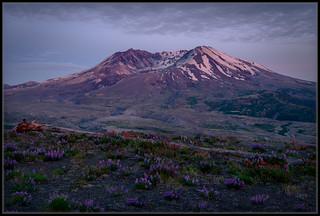Mt. Saint Helens Blue Hour