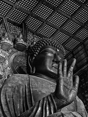 26 (ska.84) Tags: canon 70d canon70d bw blackwhite monocromo monochrome giappone japan nara todaiji tempio shrine buddah