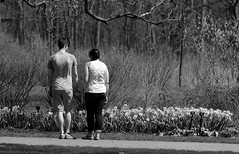 People, Young Love.  Cantigny Park. (EOS) (Mega-Magpie) Tags: canon eos 60d nature outdoors people person man woman love guy gal cantigny park wheaton il dupage illinois usa america flowers monochrome black white bw