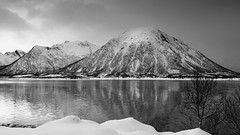 the fjord is free of ice already - HMM! (lunaryuna) Tags: norway lofoten lofotenislands lofotenarchipelago landscape seascape fjord water shore mountainrange snow winter season seasonalchange nomoreice ripples reflections distortions blackwhite bw monochrome lunaryuna