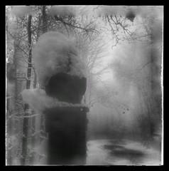 Anglų lietuvių žodynas. Žodis gloom reiškia n 1) tamsuma; 2) niūrumas; nusiminimas lietuviškai.