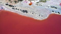 Hutt Lagoon_Pink Lake_Western Australia_0753