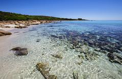 Meelup_Dunsborough-Western Australia_6439