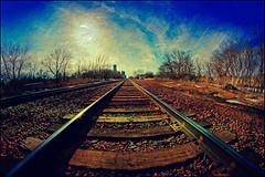 The Tracks Into town (Dave Linscheid) Tags: railroad texture textured spring butterfield watonwancounty mn minnesota usa 8mmrokinonlens fisheye