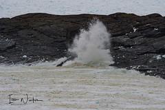 Flatrock IceSurf-17-4 (Ian L Winter) Tags: flatrock nature newfoundland driftice surf newfoundlandandlabrador canada ca