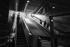 (-) (Torsten Reimer) Tags: deutschland europa people germany munich bayern stachus lights münchen spiegelungen stairs reflections reflektionen escalators ubahn bavaria schwarzweis europe rolltreppe blackandwhite de