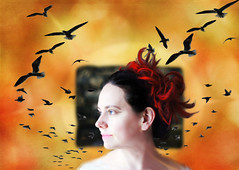 Sea Bird (Clever Poet) Tags: courtney sea photopainting birds seagulls bright red hair big bluegreen eyes textures gold