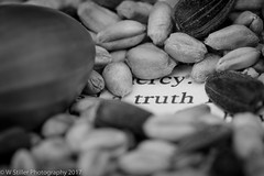 Seeds of Truth (Wayne Stiller) Tags: book colours defintition macromondays marcro memberschoiceseeds word words