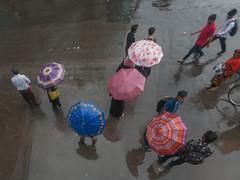 People Within Umbrella - 01 (zayembin.tajdid) Tags: umbrella five dhaka bangladesh bangladeshi monsoon rain rainy day daylight daytime travel people motion sharing care love light street photography photo canon wide 1020mm season