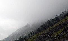 Further In Mist (Shrayansh Faria Photography) Tags: mountains hills mist fog dew altitude green forest dull gloomy white sky cloudscape clouds