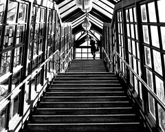 Upstairs (floressas.desesseintes) Tags: berlin lichtenrade marienfelde sbahn bahnhof station treppe stairway kontraste contrasts licht light schatten shadow frau woman jungefrau youngwoman impressionen schwarzweis
