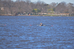 ABS_0070 (TonyD800) Tags: steveneczypor regatta crew harritoncrew copperriver rowing cooperriver