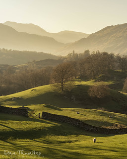 Evening on Oxen Fell