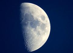 The Waxing Gibbous Moon. Daily photo (Janina Leonaviciene) Tags: dailyphoto canonpowershotg3x 80xzoom moon sky planet universe space earthsatellite satellite galaxy menulis kosmosas erdve palydovas priespilnis dangus diena janinaleonaviciene lietuva lithuania canon thewaxinggibbousmoon lunar