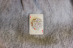 . (sweet distin) Tags: brooch card ace grey pink floral d750 diamond jewels forever yours