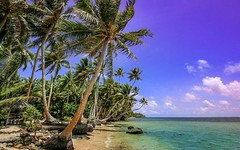What about #Yap #Micronesia do you want to visit this #tropical #paradise ? #fsm ------------------------------------------- #NatGeoTravel #lp #expediapic #rtw #tripnatics #lovetheworld #traveller #igtravelers #travelling #beautifuldestinations #traveldee (christravelblog) Tags: what about yap micronesia do you want visit this tropical paradise fsm natgeotravel lp expediapic rtw tripnatics lovetheworld traveller igtravelers travelling beautifuldestinations traveldeeper writetotravel bucketlist huffpostgram postcardsfromtheworld travelphotography travelblogger igtravel travelstoke wanderlust instatravel photography travelgram travelingram follow me website wwwchristravelblogcom for more stories feel free reshare photos but credit them commercial or editorial use contact cooperate
