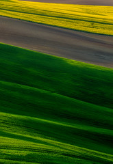 """""""Stripes on the Hills"""" (emanuelezallocco) Tags: stripes lines hills nature landscape spring"""