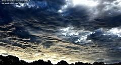 Foreboding sky (krillmerma) Tags: clouds foreboding sky stormy