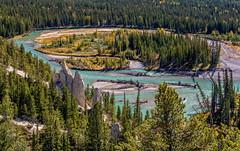 Hoodoos (NoVice87) Tags: geology bowriver canada hoodoos trees meander